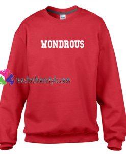 Wondrous Sweatshirt Gift sweater adult unisex cool tee shirts